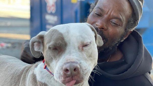 Hombre en situación de calle rescata a todos los animales de un refugio en  llamas | El Heraldo de México