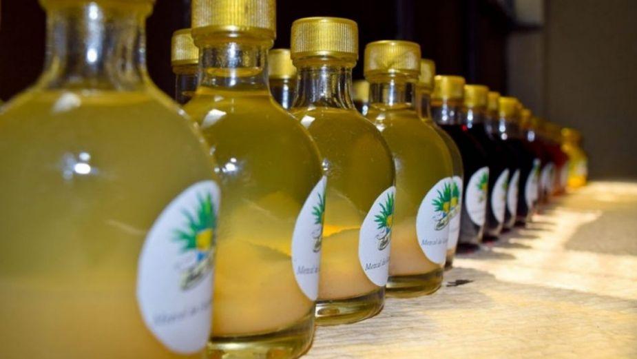 ¡Para todo mal mezcal! Entra en vigor subsidio del 100% a bebidas alcohólicas en Michoacán