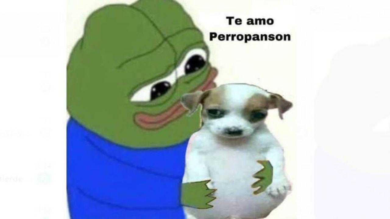 """Todo chikito"""", el perrito """"panson"""" y la historia detrás del Meme de la Semana   El Heraldo de México"""