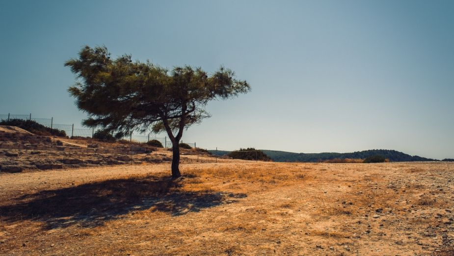 Casi el 40% del territorio de Hidalgo en sequía severa