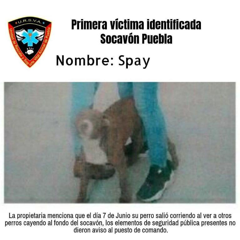 Socavón de Puebla