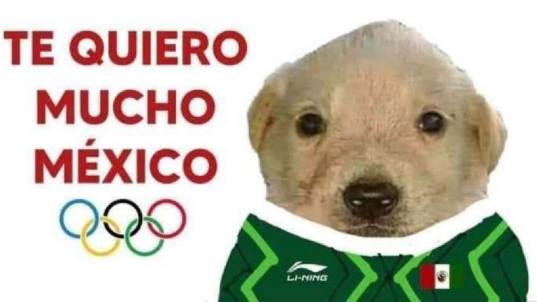 meme perro2