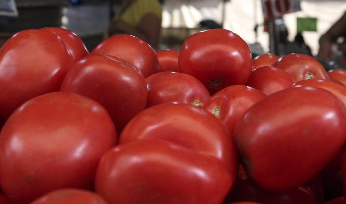 China se convirtió en uno de los principales productos de jitomate en el mundo, a pesar de que país consume muy poco este fruto rojo