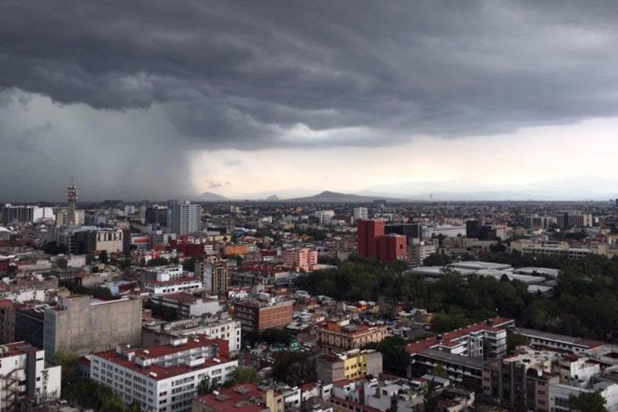 hongo-de-lluvia